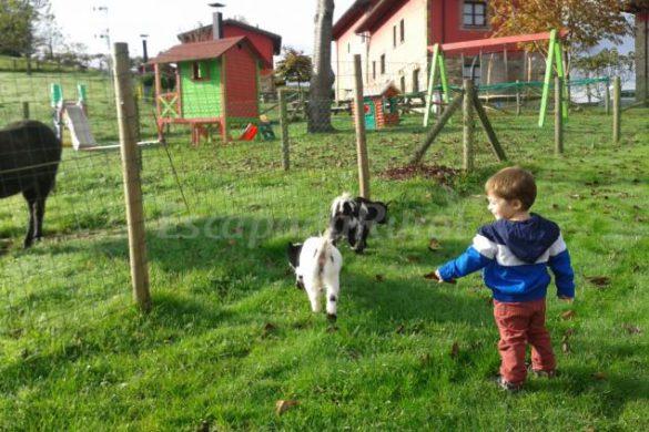 21 casas rurales con granja donde los niños se lo pasarán en grande