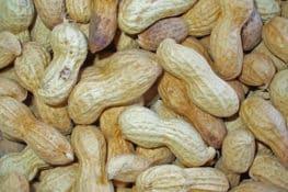 La alergia a los cacahuetes de los niños está aumentando por culpa de sus padres