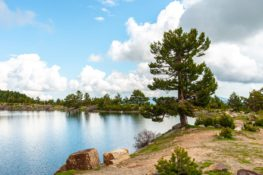 7 planes muy naturales en Burgos