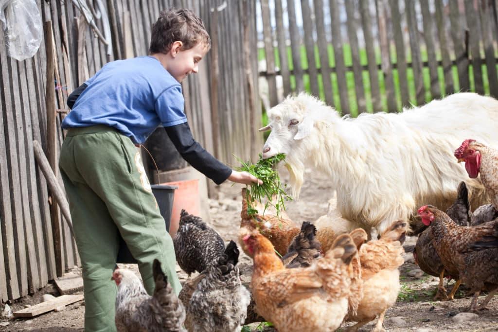 niños rural