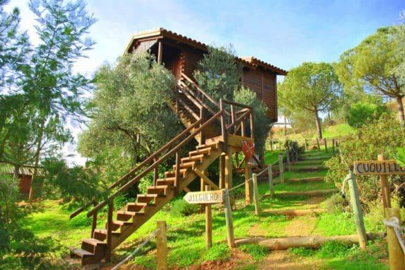 6 casas rurales maravillosas para dormir en los árboles