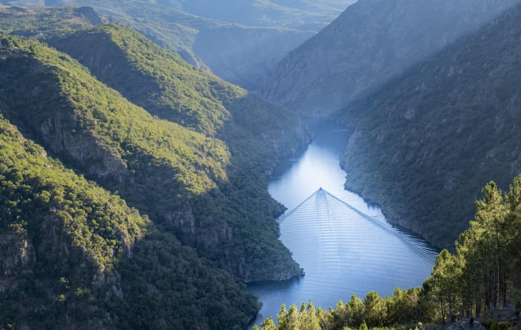 canyon seen from above with a ship sailing leaving a wake in its wake in the canyon of the river Sil in the Ribeira Sacra, Lugo, Galicia Spain
