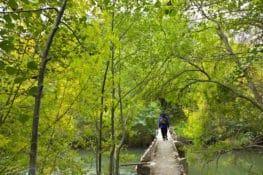 Cinco rutas en Burgos para senderistas
