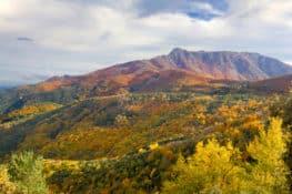 3 rutas de la castaña en el Montseny