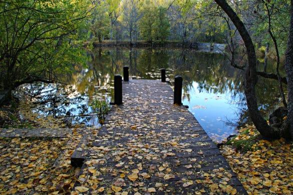 El Bosque Finlandés, belleza escandinava en la Sierra Norte de Madrid