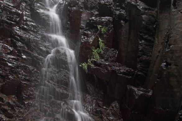 Hacia la cascada de Arure, otro tesoro escondido de La Gomera