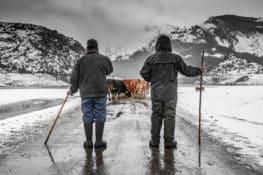 Todos necesitamos el mundo rural, el potente mensaje de FotoRural 2020