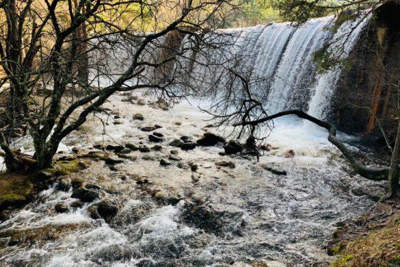 Arroyo de la Angostura: de La Isla al puente de la Angostura