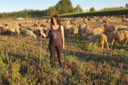 50 maravedís por millar de ovejas: una historia de las mujeres trashumantes