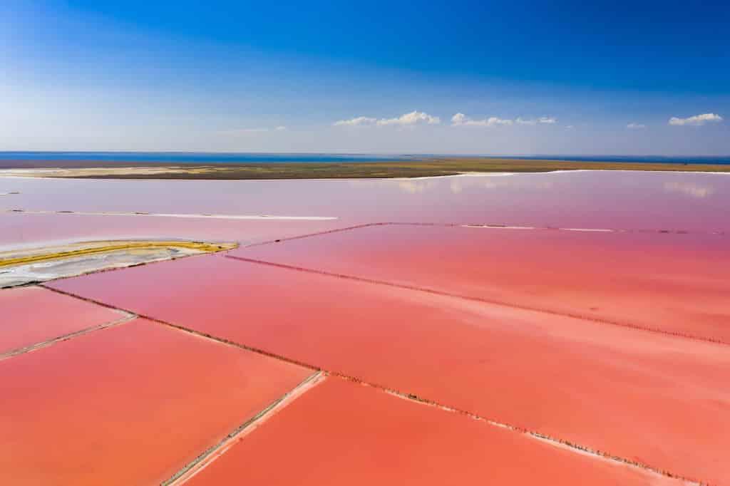 lago rosa de Torrevieja