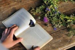 Mi pueblo lee, la red rural de festivales literarios