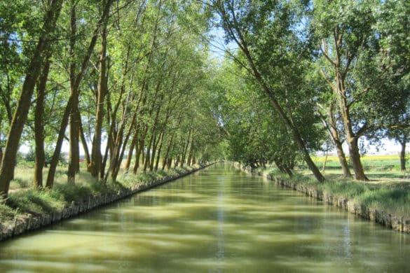 De Palencia a Valladolid en barco