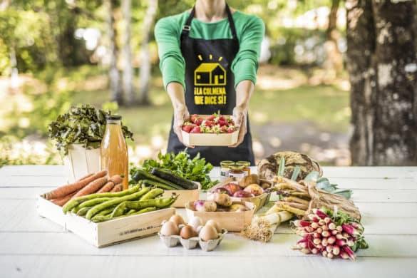 ¡La Colmena Que Dice Sí! lucha contra el desperdicio de alimentos