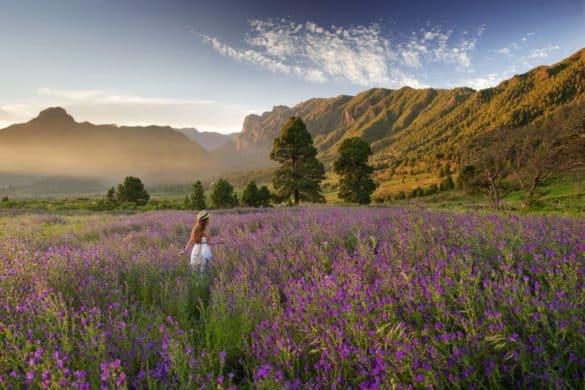 Paisajes primaverales que visitar en La Palma