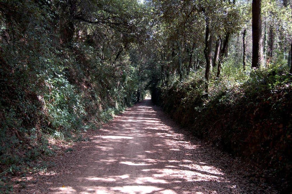 Ruta del Carrilet