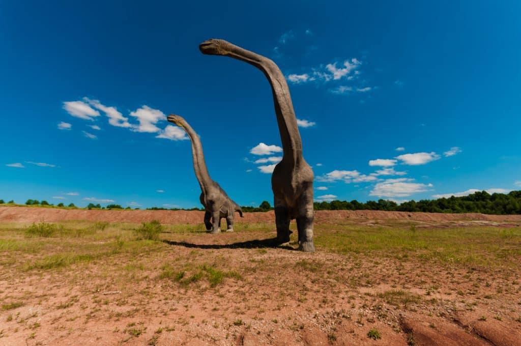dinosaur, gad, mammal