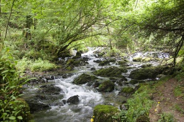 Ruta de los colores del Valle Oscuru (Asturias)